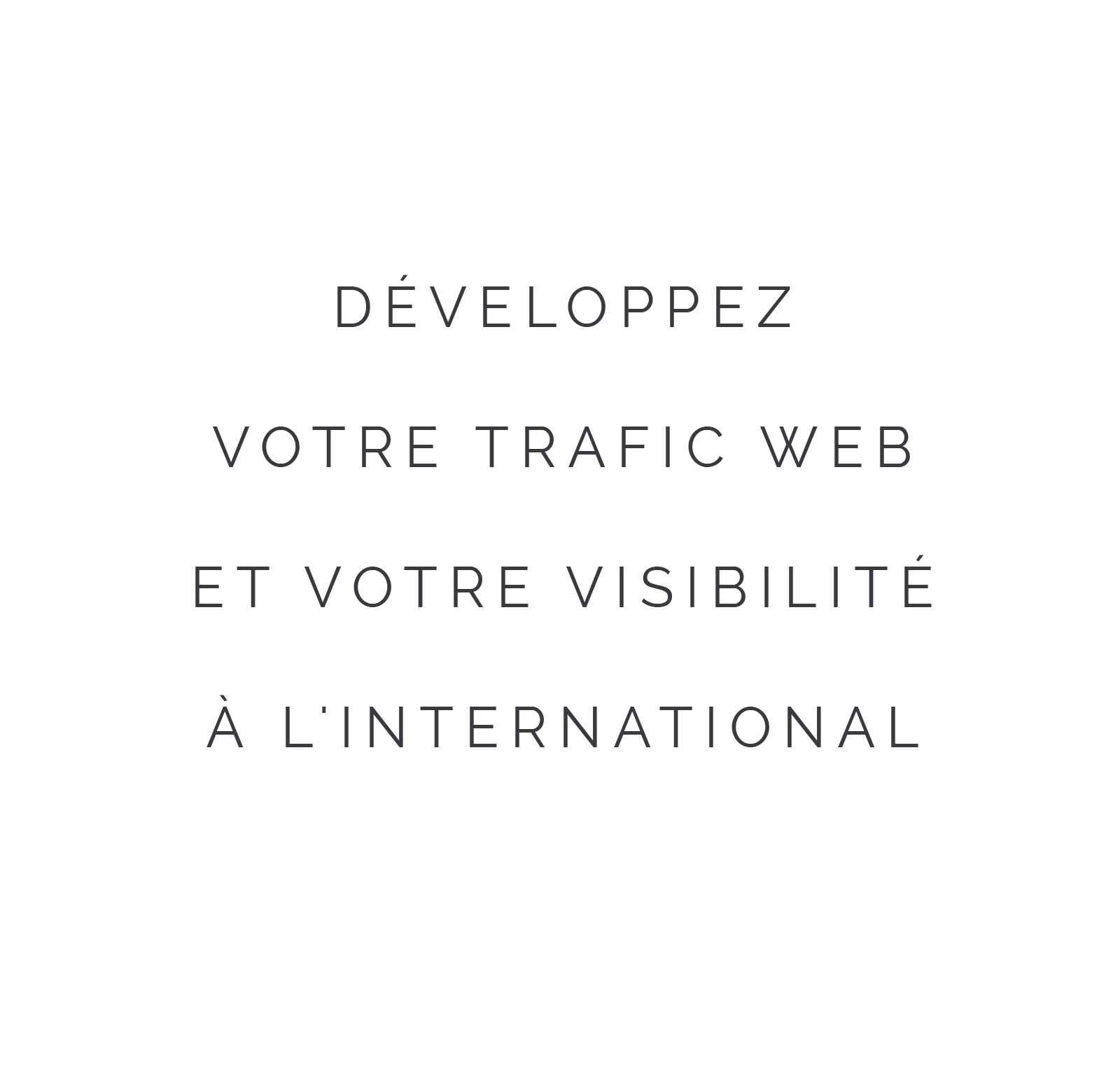 Développez votre trafic web et votre visibilté à l'international